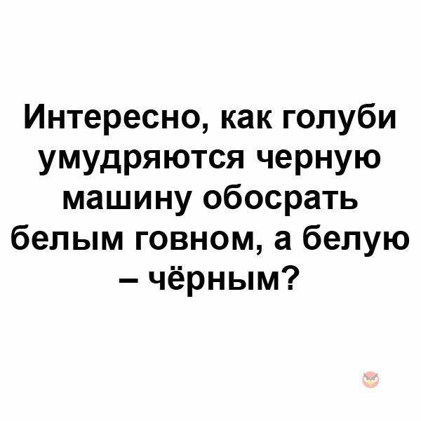 acs8.pikabu.ru_post_img_2017_12_01_9_1512141678153196351.jpg