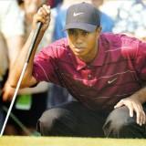 astatic2.keep4u.ru_2019_05_13_Tiger_Woods_PGA_Tour_2005_4Back_In03c1566f0f3a07ef.th.jpg