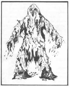 aupload.wikimedia.org_wikipedia_en_c_c3_Shambling_mound.JPG