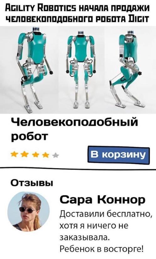 robot-term.jpg