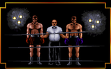 [3D World Boxing - скриншот №10]