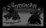 [Budokan: The Martial Spirit - скриншот №57]