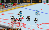 World Hockey 95