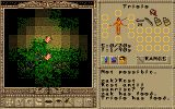 [Worlds of Ultima: The Savage Empire - скриншот №13]